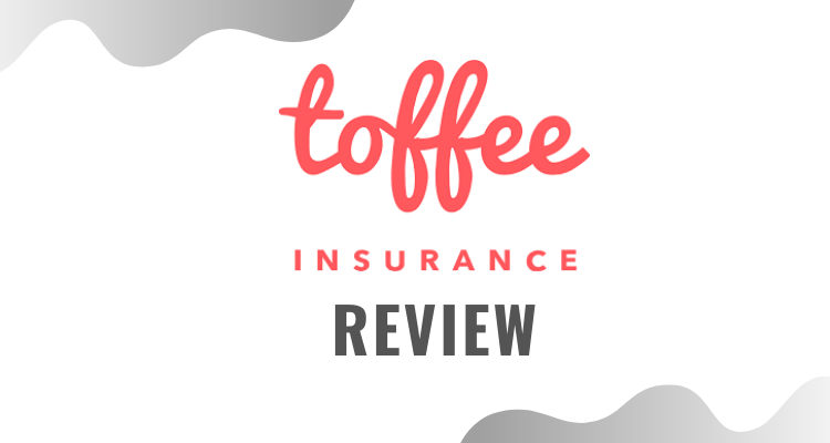 Toffee Insurance Review